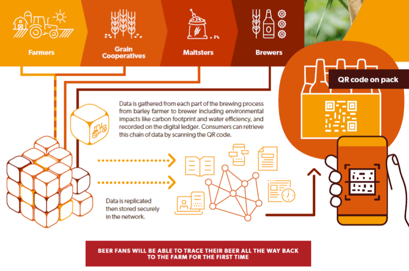 From barley to bar: AB InBev trials blockchain with farmers to bring supply chain transparency all the way to beer drinkers